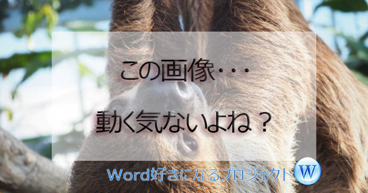 Word画像動かない