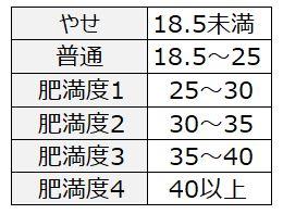 Excel_8BMI判定基準表
