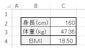 Excel_9BMI結果